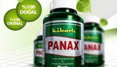 Panax yan etkileri