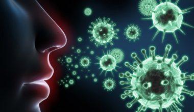 Bulaşıcı Hastalıklardan Korunma Yolları nelerdir ?