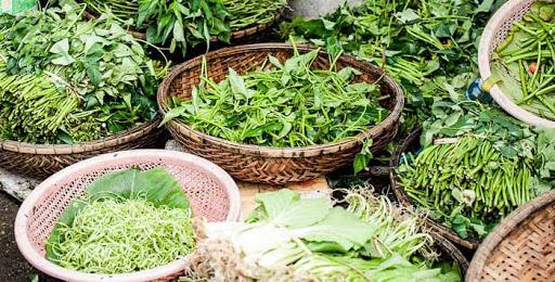 Şifalı Bitkilerin Yan Etkileri