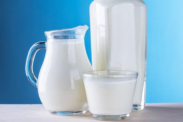 Süt ve yumurta kalori değerleri kaçtır?