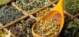 Adet Söktürücü Bitkilerin Zararları Nelerdir?