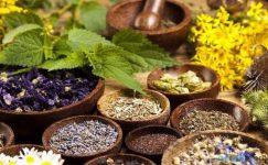 Evinizden Eksik Etmemeniz Gereken Birbirinden Faydalı 12 Şifalı Bitki